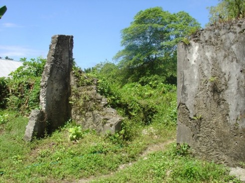 My future is in ruins. Indonesian nutmeg plantation ruins, that is.